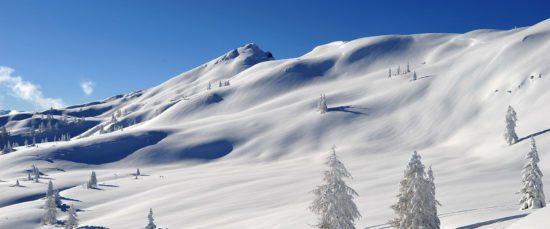 Winter- & Skiurlaub in Flachau, Ski amadé